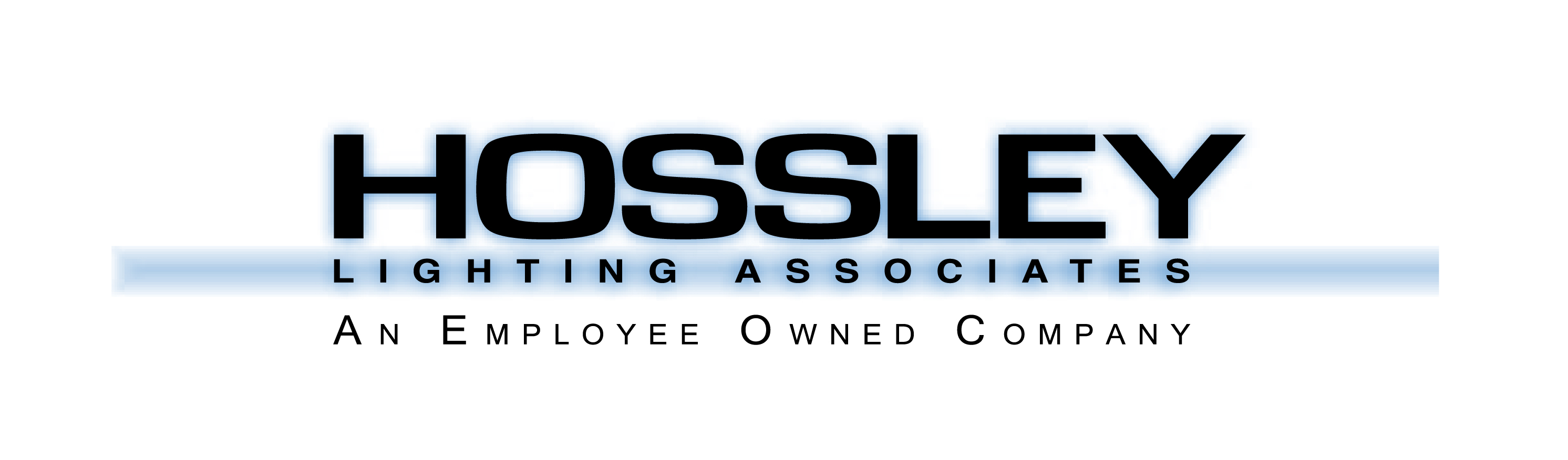 2020 Chapter Meeting Sponsor - Hossley logo